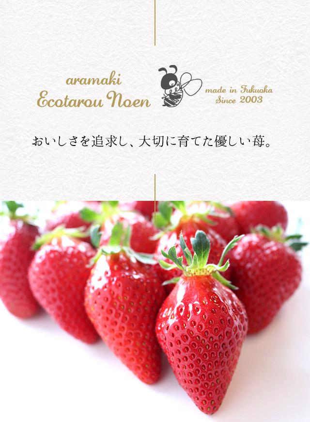 おいしさを追求し、大切に育てた優しい苺。
